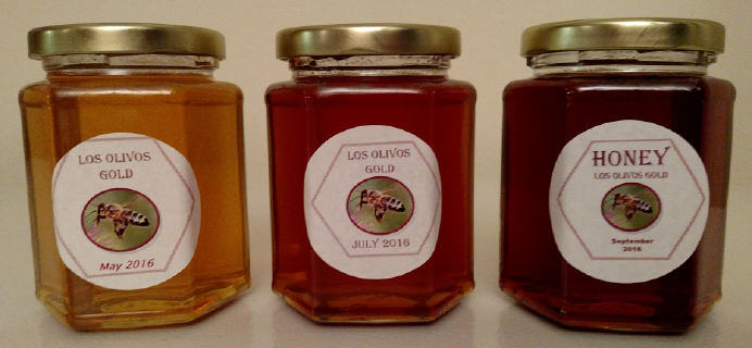 Los Olivos Gold - 2016 Honey Harvests: May, July, and September
