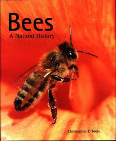 Bees -- A Natural History