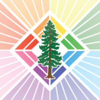 Redwood Rainbows