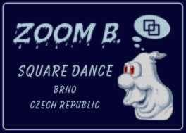 Zoom B.