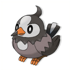 Pokemon Starly Evolution Chart Images | Pokemon Images