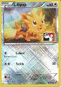 Lillipup (Pokémon Play) (Reverse Holo) - (Black & White)