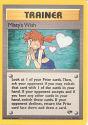 Misty's Wish - (Gym Challenge)
