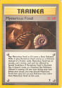 Mysterious Fossil - (Legendary Collection)