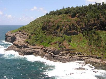 Kilauea Point (right side)