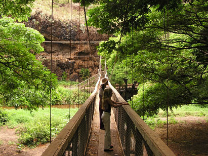 Suspension bridge (near Waimea)